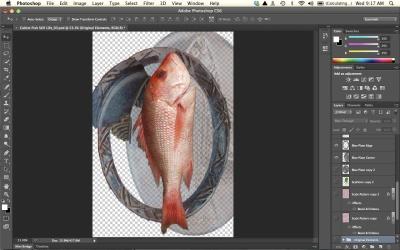 Cubism fish element