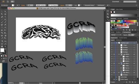 GCRA Exploring Type